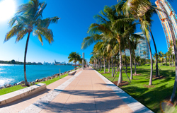 Cheap flights to Miami