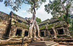 Cheap flights to Cambodia